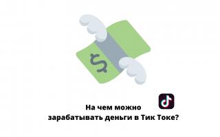 Сколько зарабатывают тиктокеры в россии