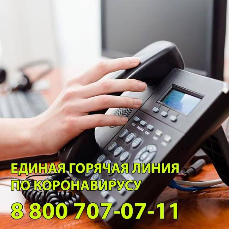 Горячая линия цик россии, служба поддержки цик россии, бесплатная горячая линия 8-800