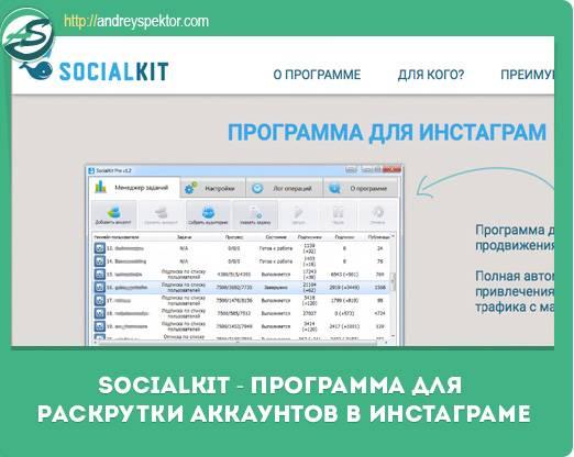 Socialkit - обзор instagram-сервиса для профессионалов | dnative