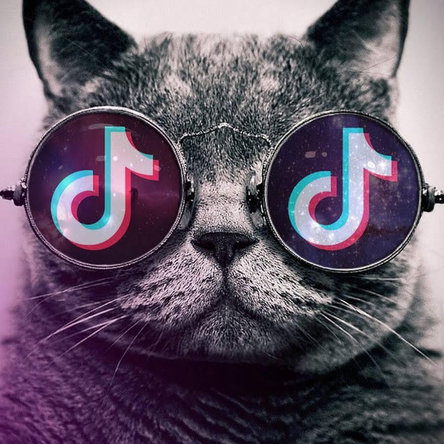 Как убрать аву в вк не удаляя фото – как вконтакте поставить пустую аватарку, не удаляя фото? - offvkontakte.ru