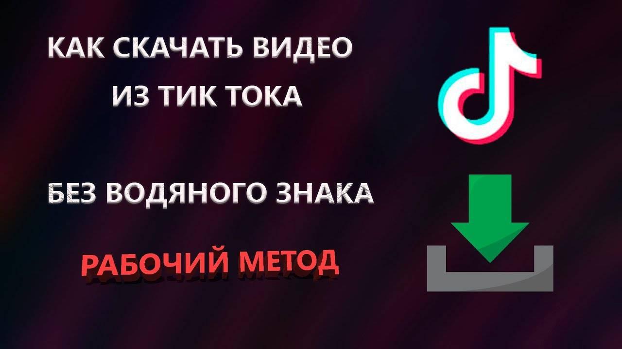 Как скачать видео с tik tok
