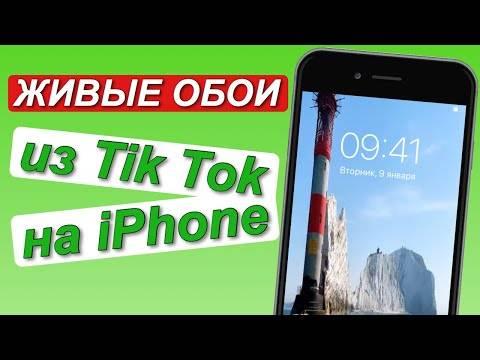 Как сделать живые обои из tiktok видео (на iphone и android)