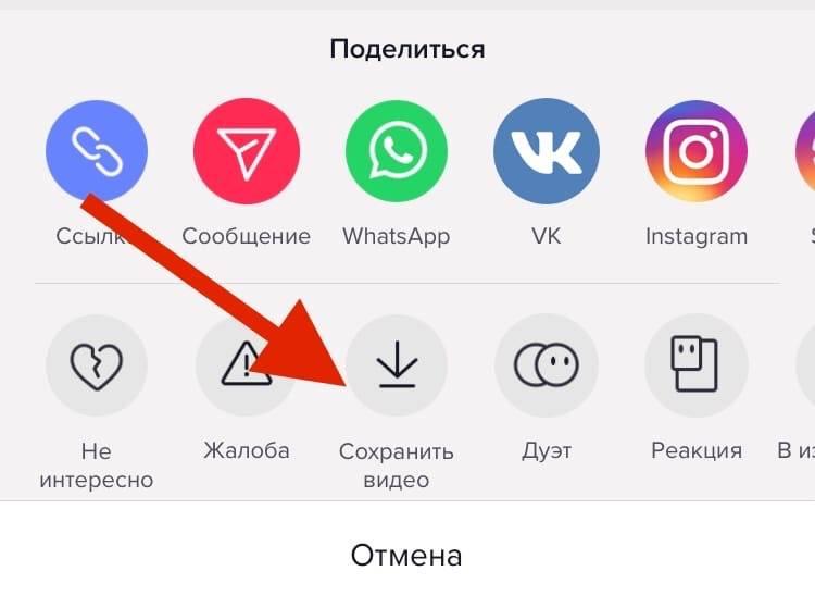 Как скачать видео с тик ток на телефон и компьютер: бесплатно, без водяного знака из черновика по ссылке